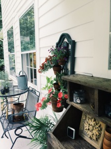 messy back deck + plants